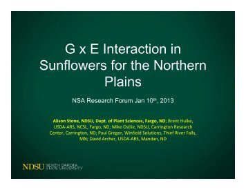 G x E Interaction in Sunflowers for the Northern Plains - National ...