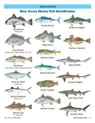 New Jersey Marine Fish Identification - State of New Jersey