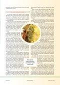 Bianchi di Puglia, vini da riscoprire - Page 2