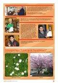 De Goed Fatsoen Kampioen - Wijktijgers - Page 7