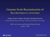 Genome-Scale Reconstruction of Saccharomyces cerevisiae