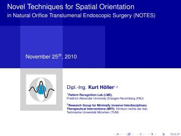 Novel Techniques for Spatial Orientation - in Natural Orifice ...