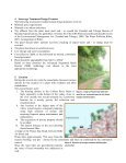 Paper Tobago Wastewater Study (2).pdf - Caribbean Environment ... - Page 5