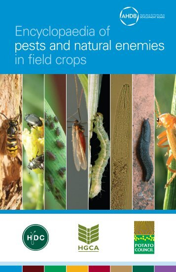 g62-encyclopaedia-of-pests-and-natural-enemies-in-field-crops
