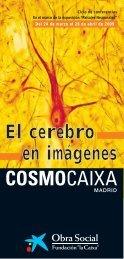 PDF Ciclo El Cerebro en Imágenes - Obra Social