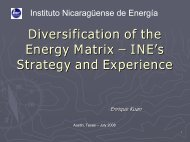 Diversification of the Energy Matrix – INE's Strategy and Experiences