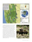 the western forest complex of thailand - Wildlife Conservation Society - Page 7