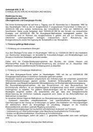 Richtlinien für den Umweltfonds der EKHN (Ökologiefonds und ...