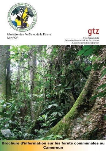 Brochure d'information sur les forêts communales au Cameroun