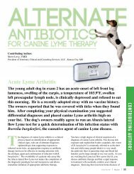 Alternate Antibiotics For Canine Lyme Therapy, Vetcom 52 ... - Abaxis