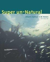Super-un-Natural: Atlantic Salmon in BC Waters (PDF)
