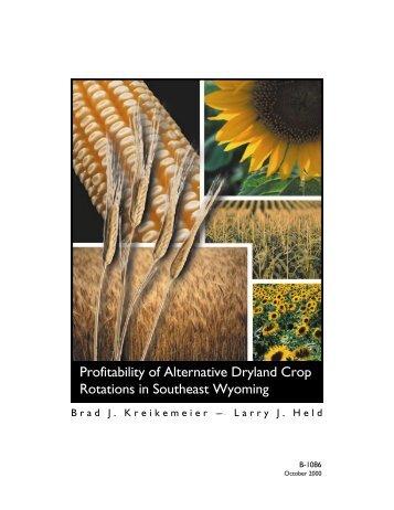 dryland crop