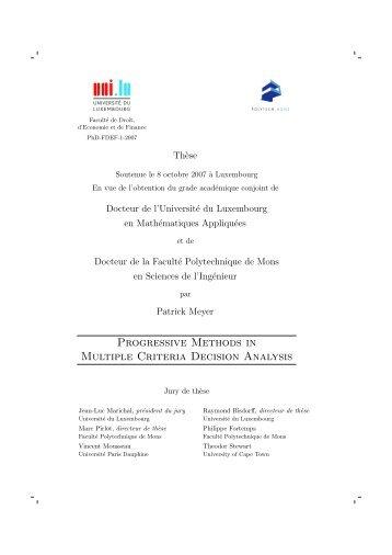 Progressive Methods in Multiple Criteria Decision Analysis