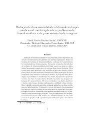 Reduç˜ao de dimensionalidade utilizando entropia condicional ...