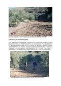 Actuaciones para la Recuperación de la Memoria Histórica de Torre ... - Page 5