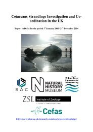 Cetaceans Strandings Investigation and Co - Cornwall Wildlife Trust ...