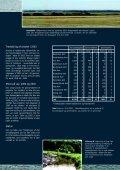 Årsberetning 2003 - Naturstyrelsen - Page 2