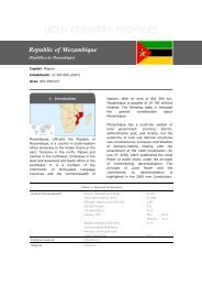 Country Profile Mozambique - UCLG
