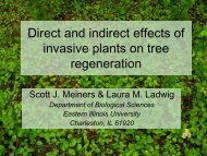 Direct and indirect effects of invasive plants on tree regeneration