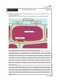 ARBEITSBLATT 1 Ionenfalle - Page 7