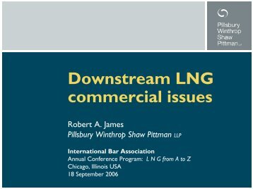 Downstream LNG commercial issues - Pillsbury Winthrop Shaw ...