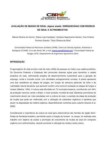 AVALIAÇÃO DE MUDAS DE SISAL (Agave sisala ... - Fundagres