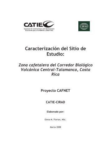 Estructura del documento - Catie