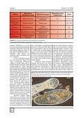 PDF (4.8 Mt) - Seepia - Page 4