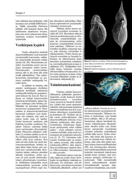 PDF (4.8 Mt) - Seepia