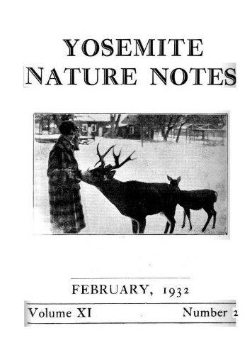 [PDF] Old Horny, Yosemite's Unicorn Buck - Yosemite Online