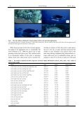 Patterns of color phase indicate spawn timing at a Nassau ... - Reef - Page 4
