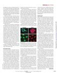 Science - Iowa State University - Page 2