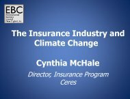 Cynthia McHale The Insurance Industry and Climate Change
