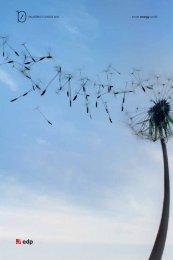Capítulo Institucional e da Sustentabilidade - EDP