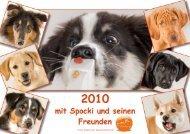 Spocki und seine Freunde - Sandra Löhe Fotodesign