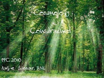Cosmological constraints - PPC 2010