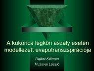 Dr. Huzsvai László és Rajkai Kálmán előadása (.pdf)..