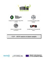 CLP – AFLP analysis of plant samples - eAMOS