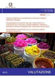 Rapporto finale linea credito Pmi - Cooperazione Italiana allo Sviluppo