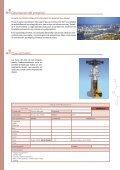Proyecto Borouge 2 - SAIDI - Page 2