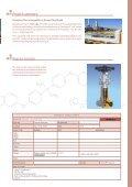 Proyecto Borouge 2 - SAIDI - Page 3