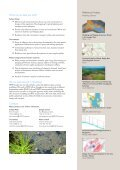 Water Modelling - WSP Group - Page 3