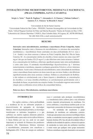 interações entre microfitobentos, meiofauna e macrofauna (praia ...
