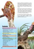 Biotope terrariums for reptiles and amphibians - sera GmbH - Page 2