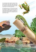 Biotope terrariums for reptiles and amphibians - sera GmbH - Page 3