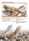 Biotope terrariums for reptiles and amphibians - sera GmbH - Page 6