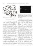 Prevalence of Borrelia burgdorferi sensu lato - Page 2