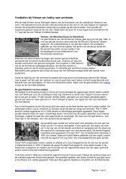 Voetballen bij Vitesse van hobby naar professie - MijnGelderland