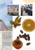 Israel - Seite 2