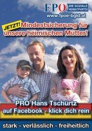 PRO Hans Tschürtz Mindestsicherung für unsere heimischen Mütter!